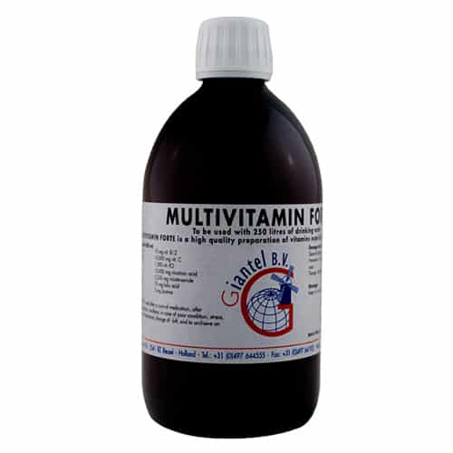 Multivitamin Forte (500ml)