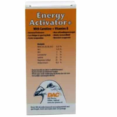DAC ENERGY ACTIVATOR bevat Carnitine, Vitamines B