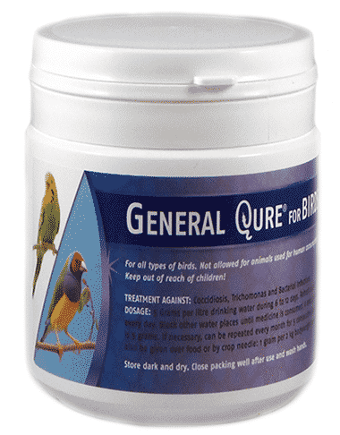 generalqure-for-bird
