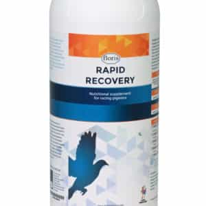 Rapid-Recovery-1L