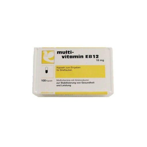 Multi Vitamin EB12 100 capsules